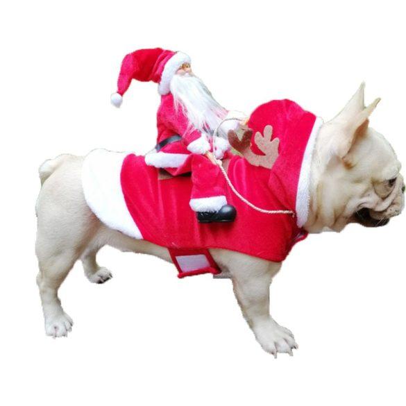Karácsonyi kutya ruha - v1