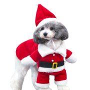 Karácsonyi kutya ruha - v2